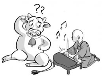 playing music to a cow